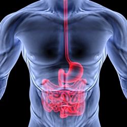 рак толстой кишки диагностика