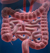 симптомы рака желудка и кишечника фото