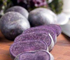 Развитие раковой опухоли предотвращает фиолетовый картофель