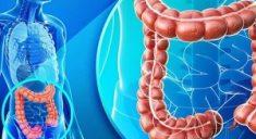 Разработан новый способ диагностики колоректального рака